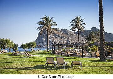 cadeiras, árvores., capim, palma, paraisos , fresco, praia, earth.