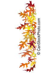 cadere, bordo, foglie