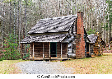Cades Cove Cabin - A double cabin owned by Henry Whitehead...