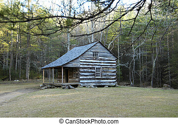 Cades Cove - Cabin - Historic Carter Shields Cabin in Cades...