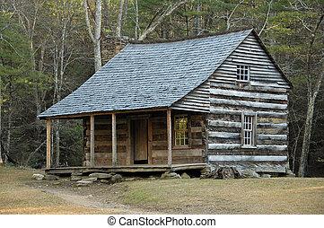 Historic Carter Shields Cabin in Cades Cove