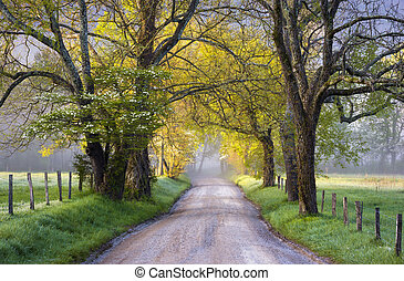 Cades Cove Great Smoky Mountains National Park Scenic Landscape Spring Scenic landscape photography on Sparks Lane