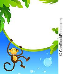 cadre, à, singe