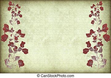 cadre, bougainvillea, rouges, branche