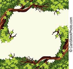 cadre, branche arbre