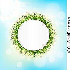 cadre, ciel, lumière soleil, herbe, vert, cercle, chamomiles