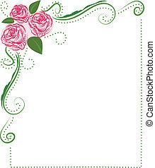 cadre, de, roses