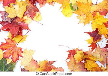 cadre, fait, leaves.