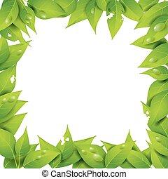 cadre, feuilles, espace vide