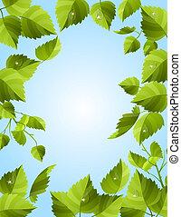 cadre, feuilles vertes
