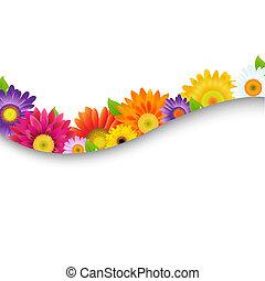 cadre, fleurs, coloré, gerbers
