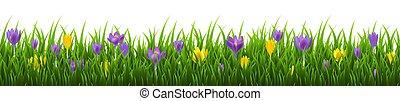 cadre, fleurs, herbe