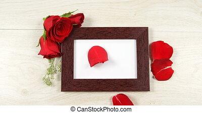 cadre, rose, tomber, photo, 4k, pétale, rouges
