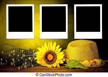 cadres, instant, été, trois, concept, photo
