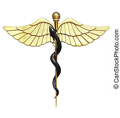 Caduceus Medical Symbol and Black Snake