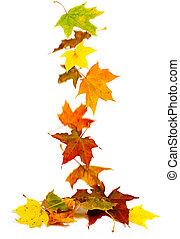 caer, otoño sale