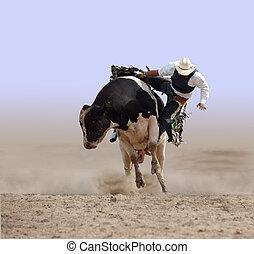 caer, vaquero, de, toro