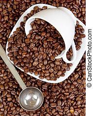 café, concept