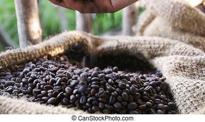 café, femme, grains, lumière, intérieur, mains, -, haut,...