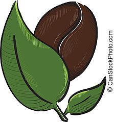 café, haricot blanc, feuilles, isolé