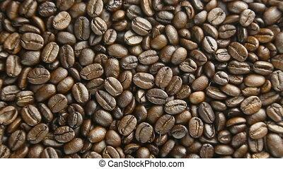 café, tourner, haricots