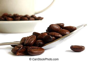 café, vie