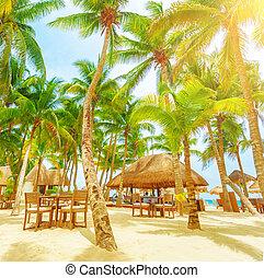 Cafe on tropical beach