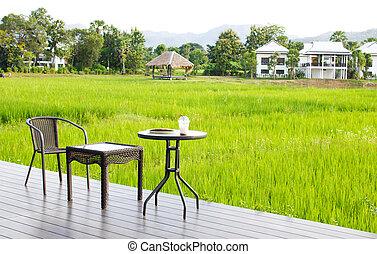 caffè mattina, a, il, natura, scenario, di, campo riso, fondo