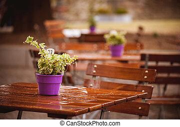 caffè, pioggia, bagnato, tavola, fiori
