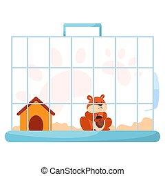 cage., adorável, cute, engraçado, doméstico, pequeno, hamster