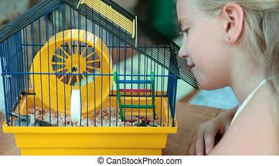 cage, hamster, enfant