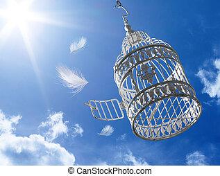 cage, s'échapper