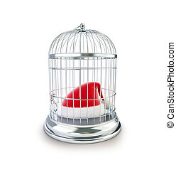 cage santa hat 3d Illustrations on a white background