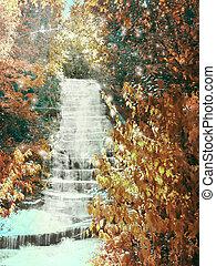 caida, en, medio, bosque, de, agua, otoño