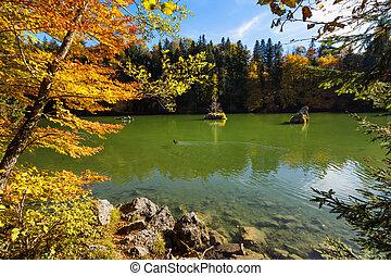 caiga pintoresco, color del otoño, lago montaña
