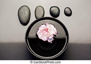 cailloux, noir, bol, au-dessus, aligné, il, oeillet, blanc, flotter, rose