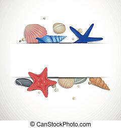 cailloux, vecteur, starfishes, seashells