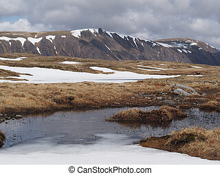Cairngorms plateau south of Braeriach, Scotland in spring -...