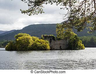 cairngorms, ruina, escocia, rothiemurchus, bosque