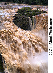 CAIRNS, AUSTRALIA - JAN 22 : Flooded Barron River entering the Barron River Gorge north of Cairns January 22, 2011 in Cairns, Queensland, Australia