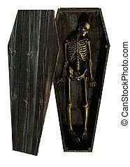 caixão, deteriorar, esqueleto