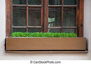 caixa, janela, capim, antigas