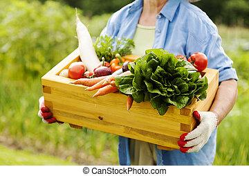caixa, mulher, legumes, segurando,  Sênior