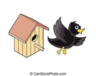 caixa, starling, nesting