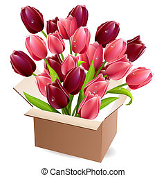 caixa, tulips, cheio, abertos