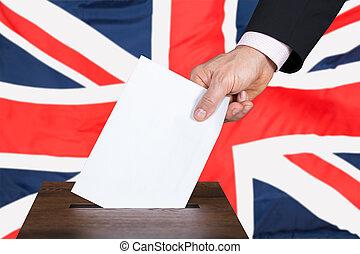caixa, voto, voto, businessperson, pôr