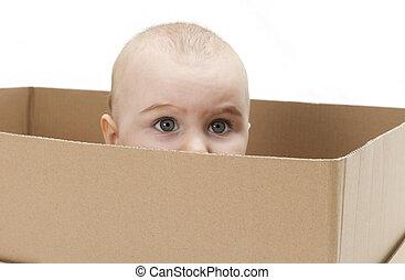 caja, cartón, niño joven