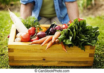 caja de madera, llenado, verduras frescas