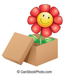 caja, dentro, flor