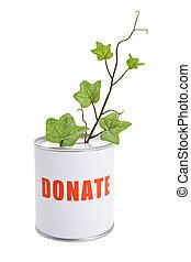 caja donativo, y, planta verde